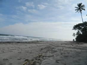 Mandiri Beach (41)